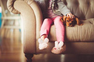Blog BELI langage canin